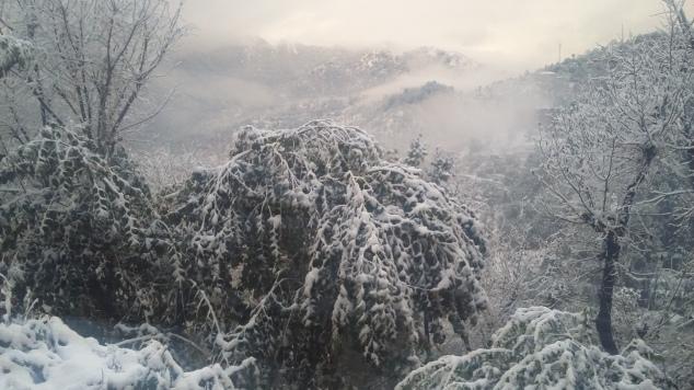 Shimla Christmas places India