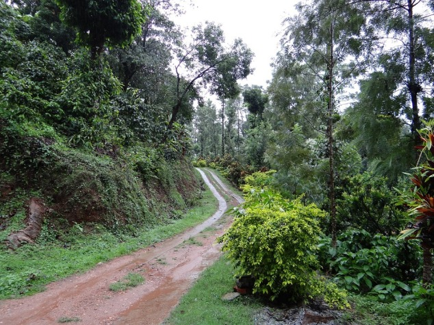 Coorg Summer Destinations in India