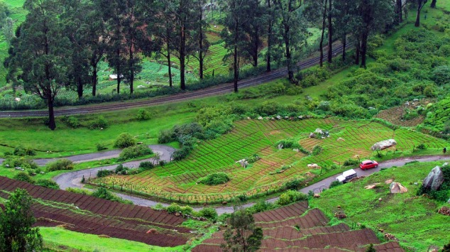 Ooty Summer Destinations in India